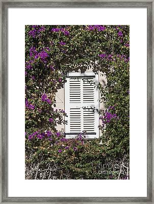 Saint Tropez Window Framed Print by John Greim