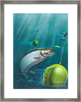 Salmon Dowrigger Framed Print by Jon Q  Wright