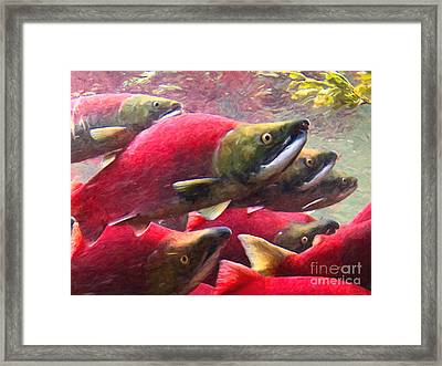 Salmon Run - Painterly Framed Print by Wingsdomain Art and Photography