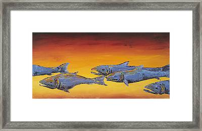 Salmon Sunrise Framed Print by Carolyn Doe