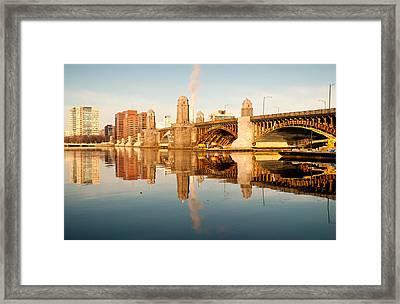 Salt-and-pepper Bridge Framed Print by Lee Costa