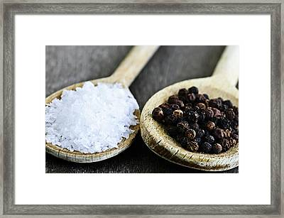 Salt And Pepper Framed Print by Elena Elisseeva