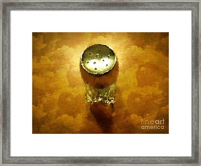 Salt Of The Earth Framed Print by Mary Machare