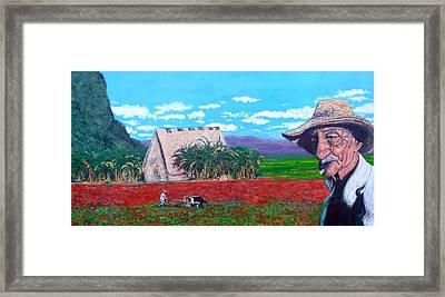 Salt Of The Earth Framed Print by Tom Roderick