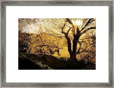 Salt River At Sunset Framed Print by Kelly Gibson