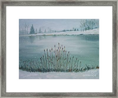 Saltville Pond Framed Print by Julie Brugh Riffey