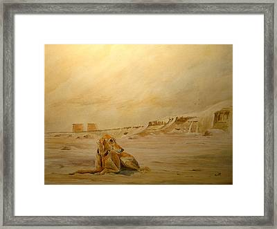 Saluky At Luxor Framed Print by Juan  Bosco