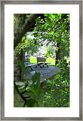 Sam Lawrence Park Hamilton 2 Framed Print by Danielle  Parent