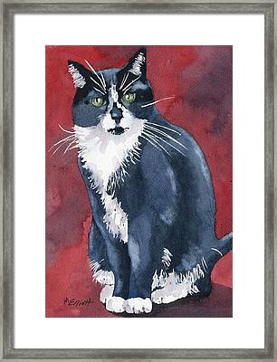 Sami Framed Print by Marsha Elliott