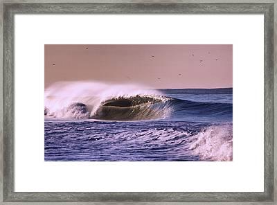 San Clemente Wave Framed Print by Bob Hasbrook