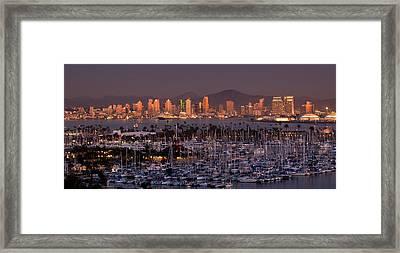 San Diego Skyline Framed Print by Alexis Birkill