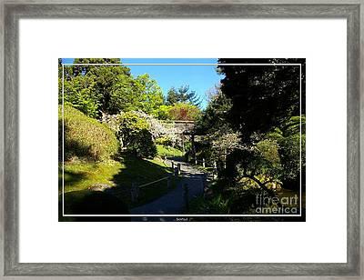 San Francisco Golden Gate Park Japanese Tea Garden 7 Framed Print by Robert Santuci