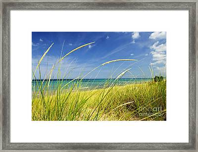 Sand Dunes At Beach Framed Print by Elena Elisseeva