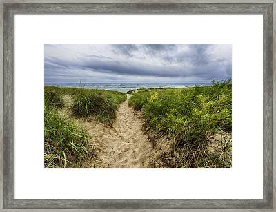Sand Dunes Beach Path Framed Print by Sebastian Musial