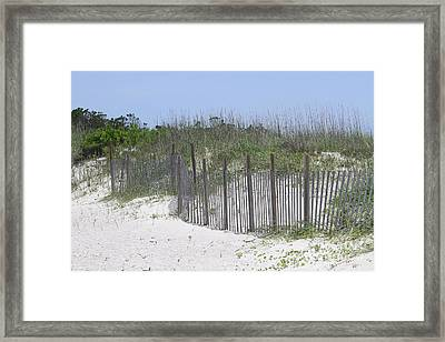 Sand Fence At Cape Lookout Framed Print by Cathy Lindsey