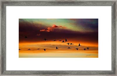 Sandhill Cranes Take The Sunset Flight Framed Print by Bill Kesler
