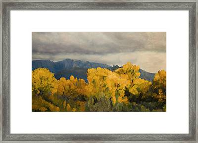 Sandias From The Bosque Framed Print by Jack Atkins