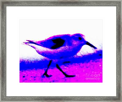 Sandpiper Abstract Framed Print by Eric  Schiabor