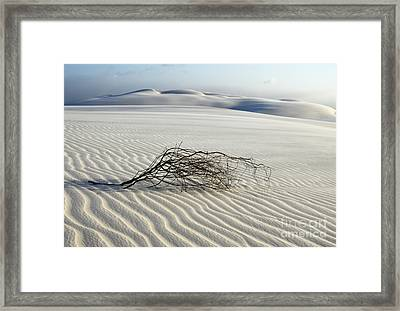 Sands Of Time Brazil Framed Print by Bob Christopher