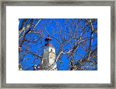 Sandy Hook Lighthouse Through Trees Framed Print by Olivier Le Queinec