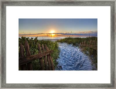 Sandy Trail Framed Print by Debra and Dave Vanderlaan