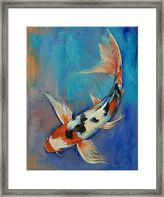 Sanke Butterfly Koi Framed Print by Michael Creese