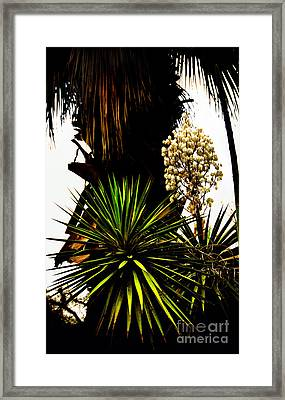 Sans Titre II Framed Print by Gerlinde Keating - Galleria GK Keating Associates Inc