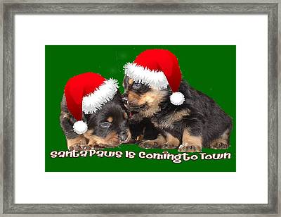 Santa Paws Is Coming To Town Christmas Greeting Framed Print by Tracey Harrington-Simpson