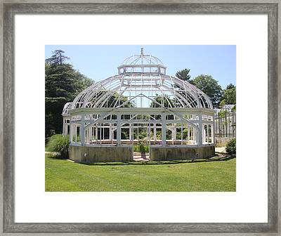 Sapphire 1 Framed Print by Angelique Francis