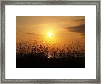 Sarasota Sunset's Framed Print by Athala Carole Bruckner