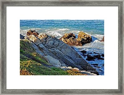 Sarcophagus Formation On Seaside Rocks Framed Print by Susan Wiedmann