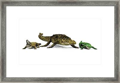 Sarcosuchus And Crocodiles Framed Print by Walter Myers