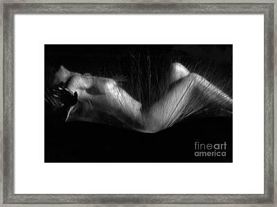 Sas 3 Framed Print by Tony Cordoza