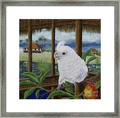 Sasha In Indonesia Framed Print by Danielle  Perry