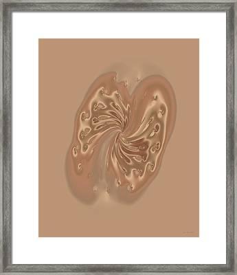 Satin Butterfly Framed Print by Judi Suni Hall