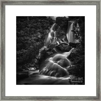 Saute De La Truite Framed Print by Nigel Jones
