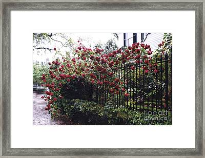 Savannah Georgia Red Roses And Gates Architecture Framed Print by Kathy Fornal