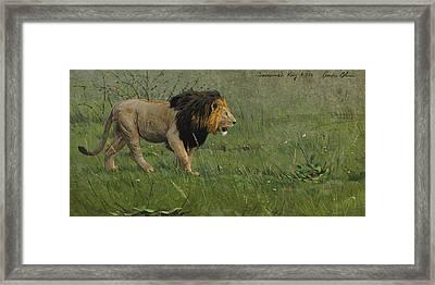 Savannah King Framed Print by Aaron Blaise