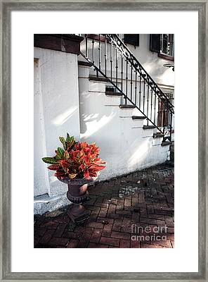 Savannah Style Framed Print by John Rizzuto