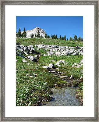 Scapegoat Amphitheater And Spring Framed Print by Pam Little