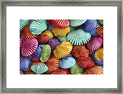 Scattered Colors Framed Print by Carol Leigh