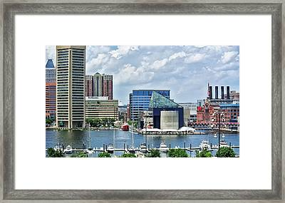 Scene From Federal Hill In June Framed Print by Toni Martsoukos