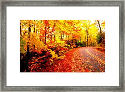 Scenic Autumn Drive Framed Print by L Brown