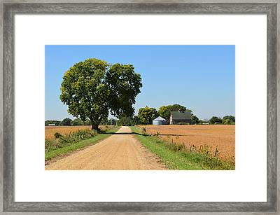 Scenic Journey Framed Print by Tom Druin