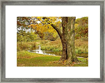 Scenic Michigan Framed Print by Gary Richards