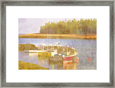 Schoodic Peninsula Maine Framed Print by Carol Leigh
