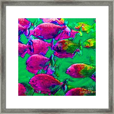 School Of Piranha V2 - Square Framed Print by Wingsdomain Art and Photography