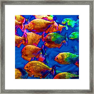 School Of Piranha V3 - Square Framed Print by Wingsdomain Art and Photography