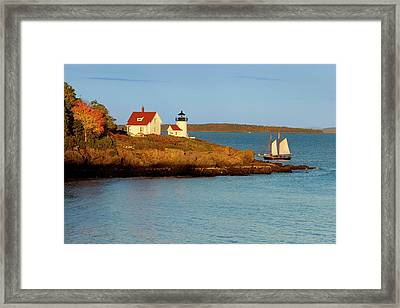 Schooner Sails Past The Curtis Island Framed Print by Brian Jannsen