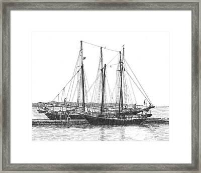 Schooners On The York River Framed Print by Stephany Elsworth